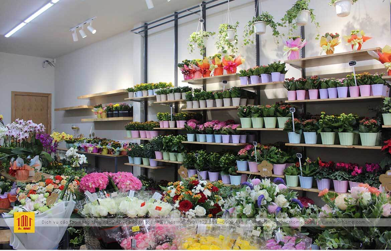Doctor Home cai tao shop hoa Dalat Hasfarm chi nhanh Truong Cong Dinh Quan Tan Binh