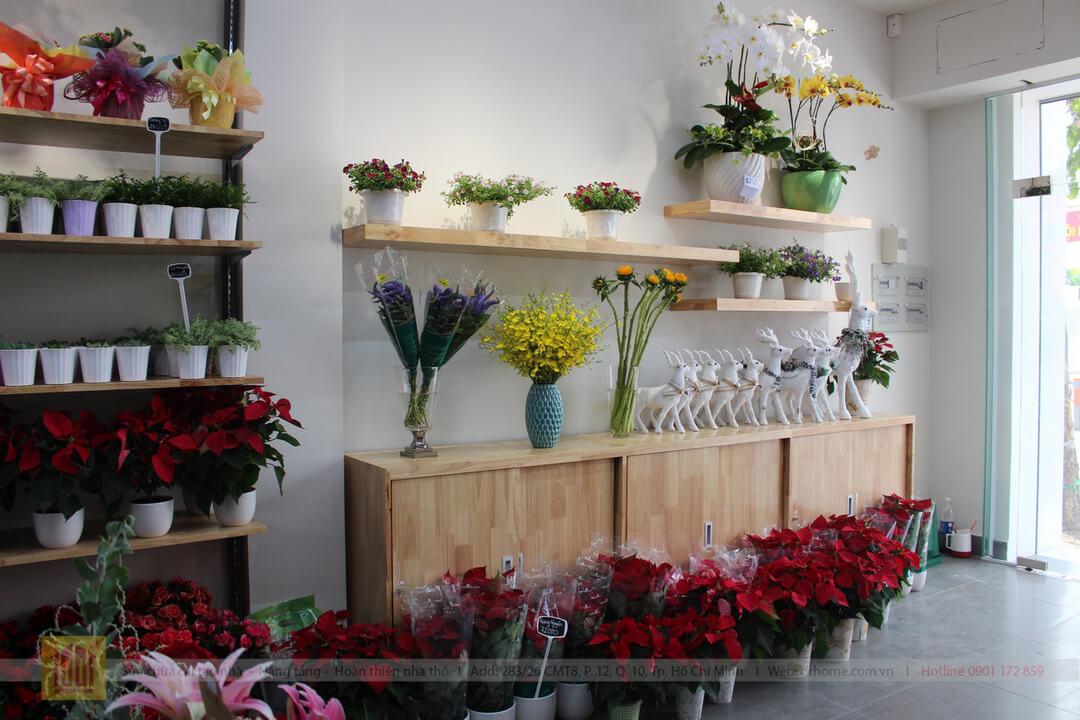 Drhome cai tao showroom hoa Dalat Hasfarm 620 PVT Go Vap 10