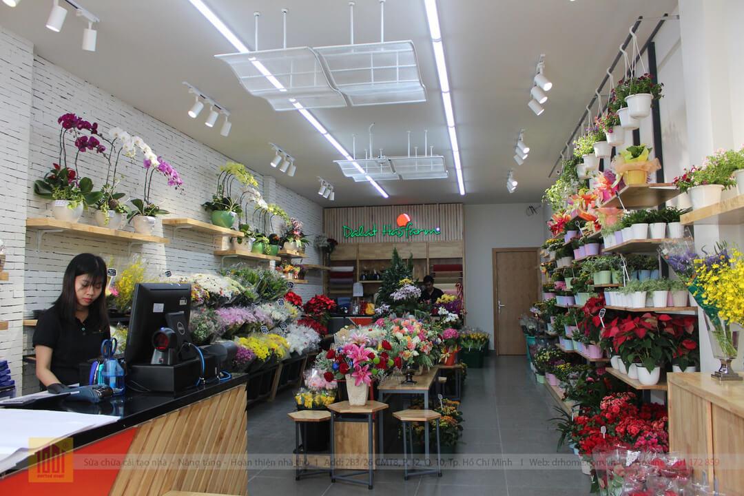 Drhome cai tao showroom hoa Dalat Hasfarm 620 PVT Go Vap 2